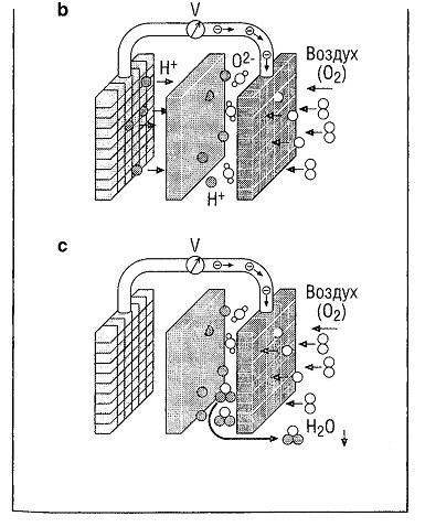 Принцип действия топливного элемента типа РЕМ