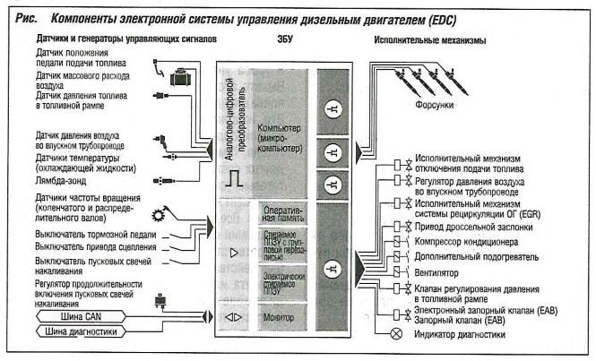 Компоненты электронной системы управления дизельным двигателем (EDC)