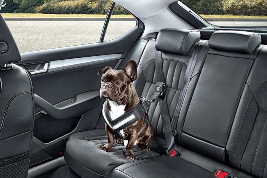 Системы комфорта и удобства в автомобиле