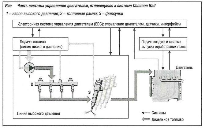 Часть системы управления двигателем, относящаяся к системе Common Rail