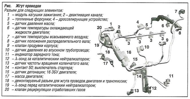 Жгут проводов