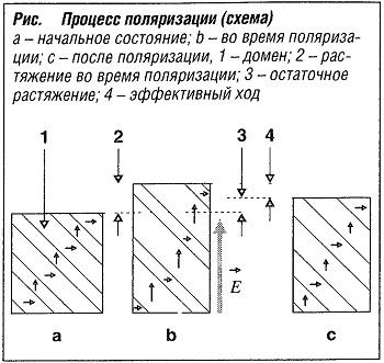 Процесс поляризации